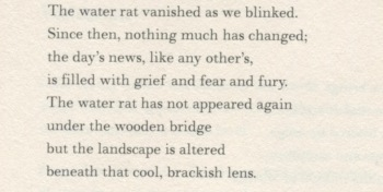 The water rat vanished as we blinked. Since then, nothing much has changed; the day's news, like any other's, is filled with grief and fear and fury. The water rat has not appeared again under the wooden bridge but the landscape is altered beneath that cool, brackish lens.
